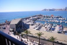 Apartment in Benidorm at 50 m from the beach