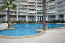 Apartment with swimming pool in Sin especificar area